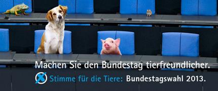 Kampagne_Bundestagswahl_2013_fb-Motiv_430